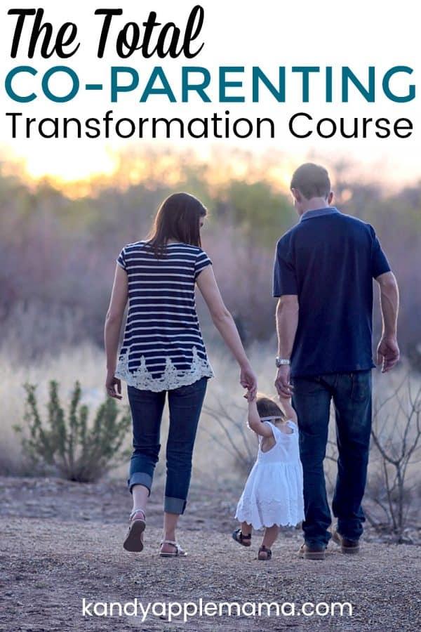 Coparenting transformation course