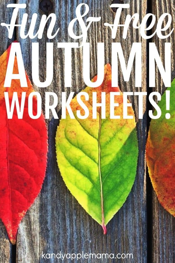 Fun and free autumn worksheets