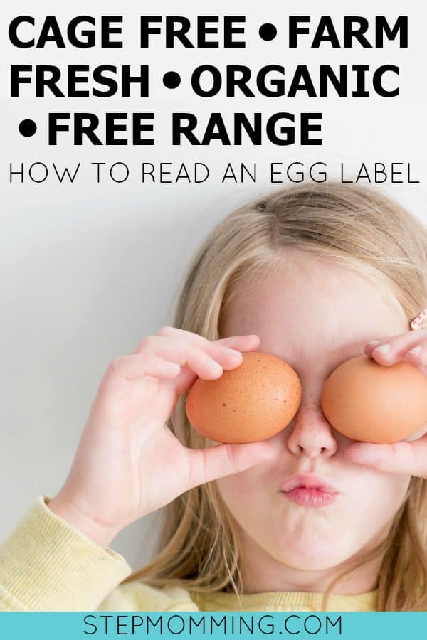 Cage Free Farm Fresh Organic Free Range Omega 3 Natural How to Read an Egg Label