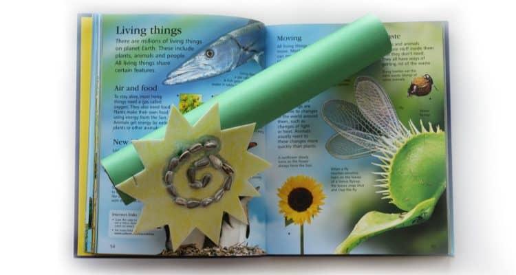 sunflower craft for kids