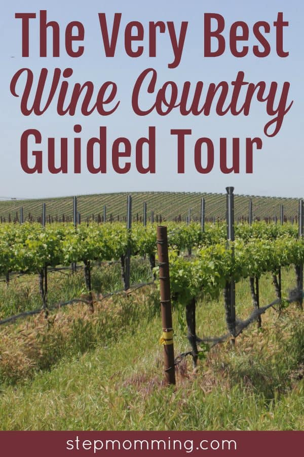 The Very Best Wine Country Guided Tour | Wine Country Tour | Visiting Wine Country | Napa California Wine Tours | Visiting Napa | Traveling to Napa Valley | Tours from San Francisco to Napa | Green Dream Tours Review